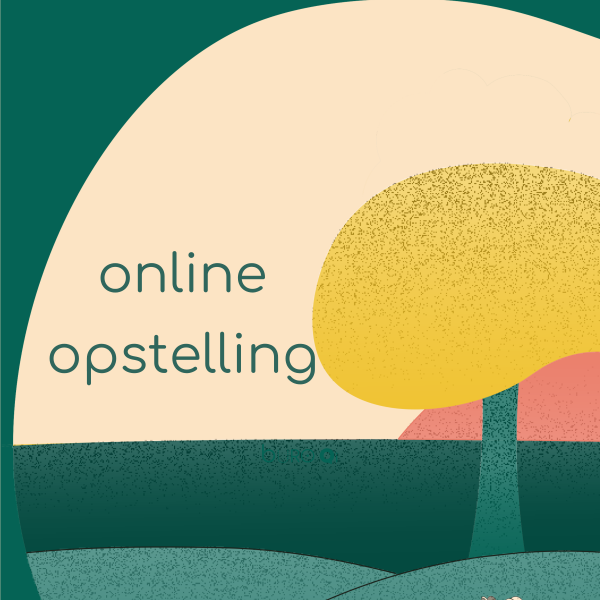 Online Opstelling